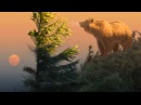 Speed Painting - Photoshop - Something On the Air