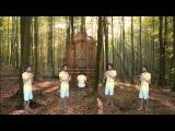 Thomas Tallis - If Ye Love Me - Instrumental version (Crumhorn consort)