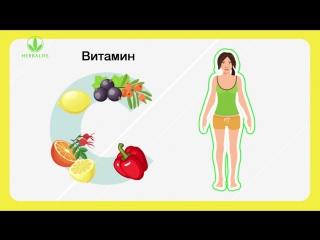 Антиоксиданты природные источники продления молодости клеток (4)