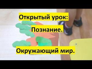 Открытый урок  Познание  Окружающий мир , средняя группа детского сада на Вагжановском переулке 8а