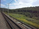 Вид из окна вагона поезда № 257 Томск - Анапа