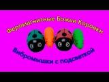 Феромагнитные божьи коровки и вибромышки Magnetic brothers and vibro mouse crawling toy