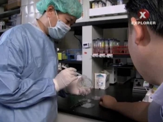 Super Science: Stem Cells.(2012.XviD).SATRip
