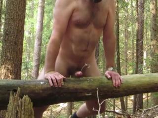Tree hump and cumming