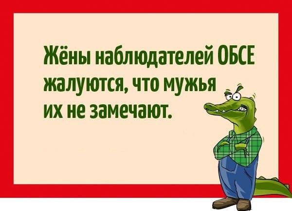 http://cs7065.vk.me/c628429/v628429362/7822/MK8CizEyW6Y.jpg