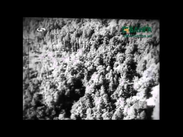 Лесозаготовительная техника КрАЗ Кременчуг Архив