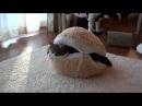 マカロンなベッドとねこ。 Macaron bed and Maru Hana
