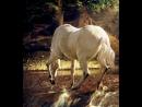 белый конь (Музыка А.Виноградова - слова Юлия Кима) Исполняет Ген. Былкин