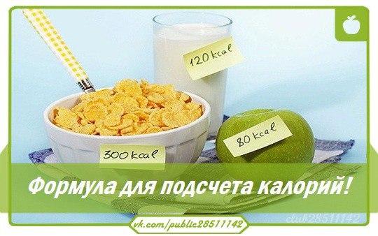 Правильное питание для похудения - роль интуиции