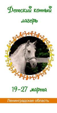 Детский конный лагерь «Солнечный остров»