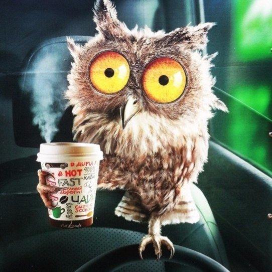 Ранок починається не з кави.