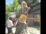 Скульптура из дерева бензопилой