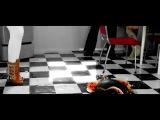 МакSим - Весна (DJ VENGEROV REMIX) (27 июл. 2010)