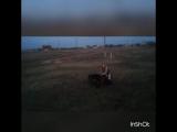 Моня, укладка в поле