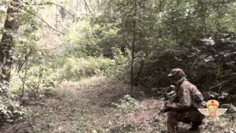 Школа Разведчика (уникальная тактическая подготовка, спецназ ГРУ, ВДВ) Стрелков, Губарев, Мозговой