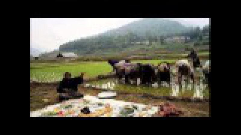 Talyshi song Talish mahnisi Талышская песня:Dinyo parasti
