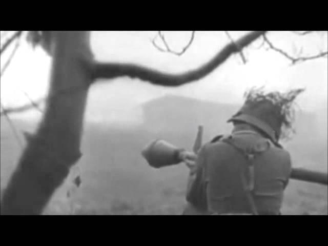 Waffen-SS - April,1945, Final Battle(Battle of Berlin)