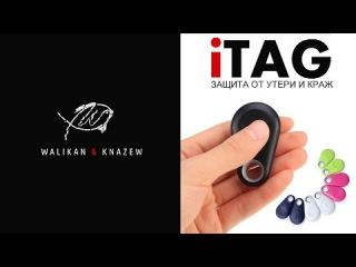 iTAG брелок-трекер  для iOS/Android  Aliexpress нет забытым вещам! Обзор устройства