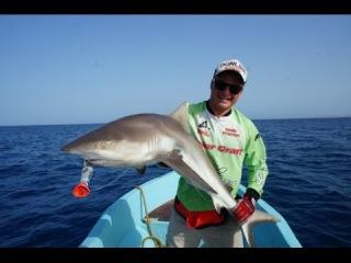Андрей Питерцов. Ловля акулы