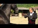 Mario Luraschi et c'est chevaux du cinema