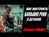 Simeon Panda ВСЁ О ТРЕНИРОВКЕ РУК В ДЕТАЛЯХ (RUS Sportfaza)