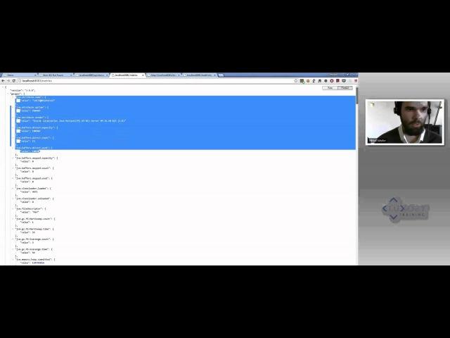 Создание высокопроизводительных RESTful веб-сервисов с использованием фреймворка Dropwizard