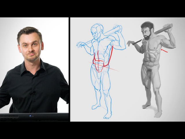 Anatomy Critiques - The Abs