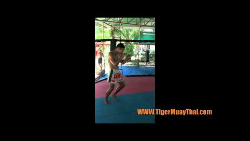 Tiger Muay Thai: Stance, Balance, and movement technique