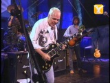 Peter Frampton, While My Guitar Gently Weeps, Festival de Vi