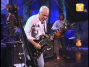 Peter Frampton - While My Guitar Gently Weeps (George Harrison)