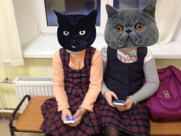 Нечего было делать в школе.... Прикалывались над друг другом)))