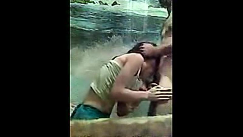 Кавказкие девушки сексом занимаются скрытая камера фото 487-118