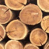 Жуков лес, деревообрабатывающее производство