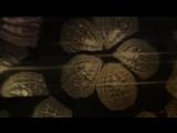 Enigma - Gravity Of Love (Chillen Club Mix)