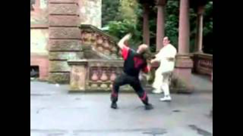 The best of Wing Tsun Leung Ting (Best video ever seen)