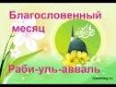 Группа Арафат мавлид на аварском языке