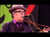 Elvis Costello Glastonbury 2013