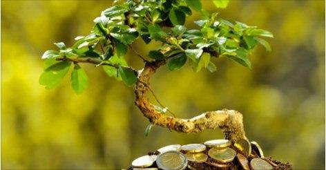 Успех в финансовых делах — это не подарок судьбы и не удел избранных. Его может достичь любой человек, если будет придерживаться основополагающих принципов финансового успеха, и сегодня я вам про них расскажу.