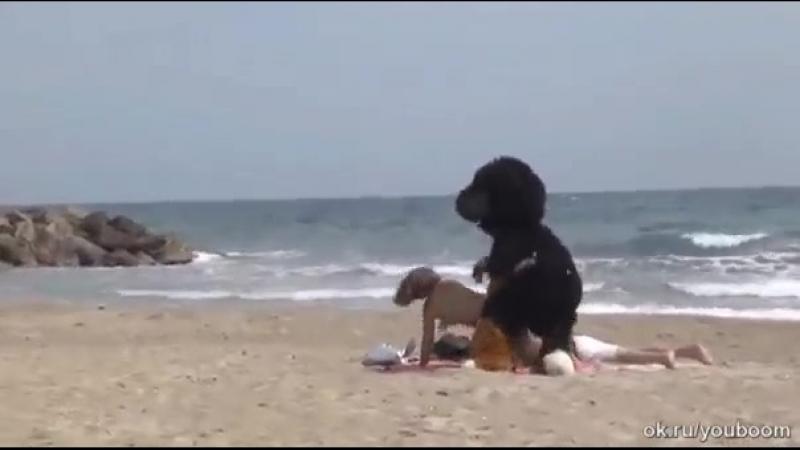 мимо такой позы даже собака не пробежит