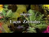Lacin Zeynalov - Sevgilim (Карелия той)