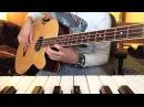Isn't She Lovely - Stevie Wonder - Acoustic Bass Cover