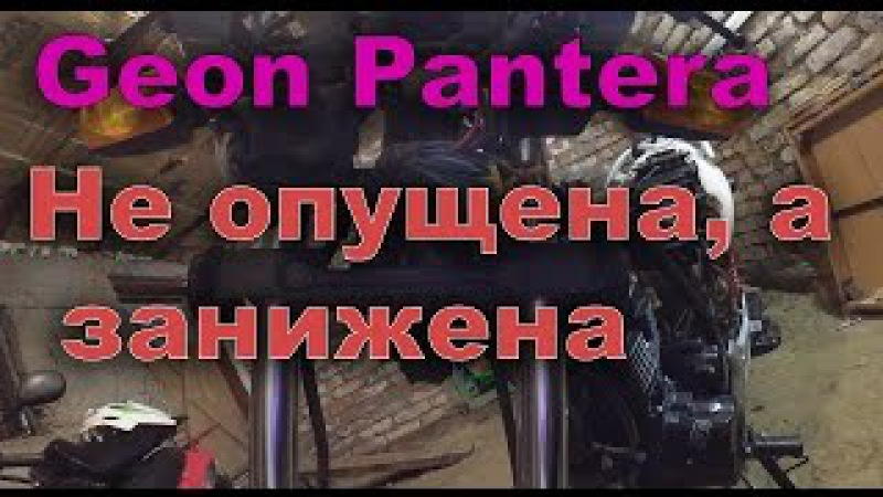 Geon Pantera 150 CG | Проставки в вилку, сделанные из монет хД