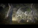 Lichtmond - Magic Forest HD