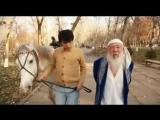 Сырым Исабаева - Сагынамын (ost Кыз алып кашу) [www.kazhit.com]000