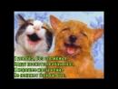 Песенка про лучших друзей
