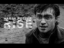 Harry potter rise
