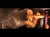 Ужастики 12+ 3D| Трейлер