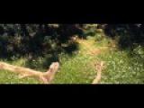 КРАСАВИЦА И ЧУДОВИЩЕ 2014 720p BluRay