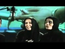 Ey Iran - اجرای سرود ملی با صدای دلنشین هنرمندان مر
