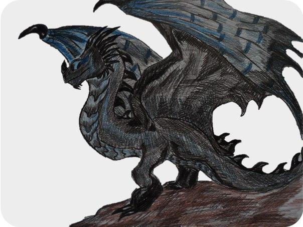 как приручить дракона рисунки видео как рисовать